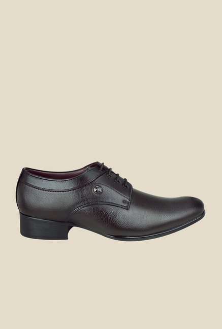 Arrow Dark Brown Derby Shoes