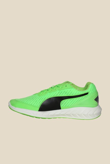 Puma Ignite Ultimate Gecko Green & Black Running Shoes