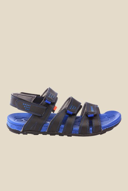 Sparx Black & Royal Blue Floater Sandals