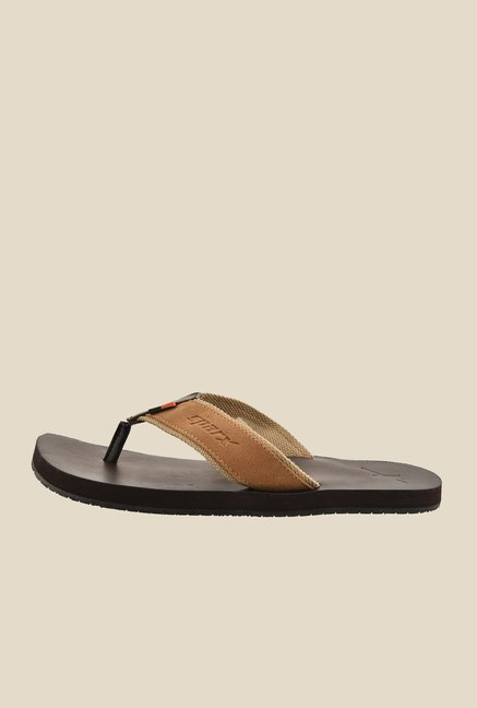 Sparx Tan & Brown Flip Flops