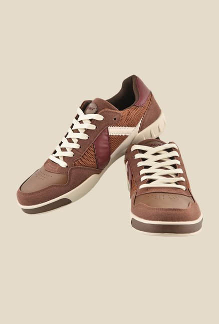 Sparx Brown & Beige Casual Shoes