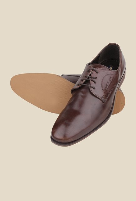 Red Tape Brown Derby Shoes