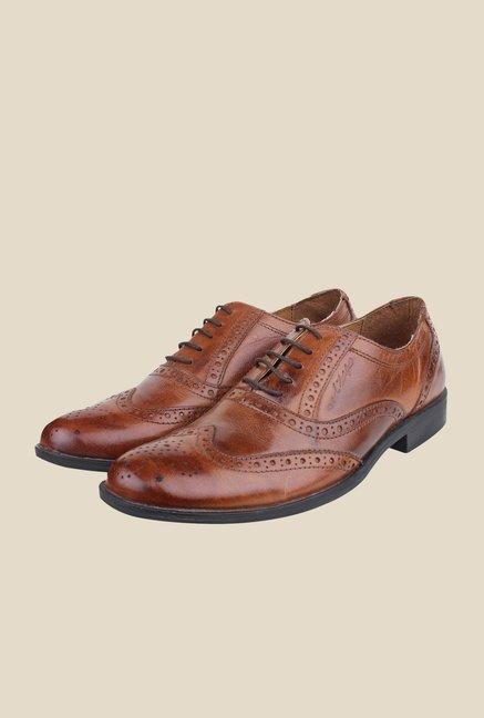 Red Tape Tan Brogue Shoes