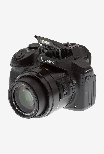 Panasonic Lumix FZ300 12.1 MP Point & Shoot Camera (Black)