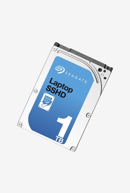 Seagate 1 TB Internal Hard Disk (Silver)