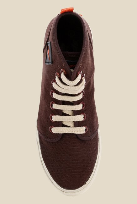 Sparx Dark Brown Sneakers
