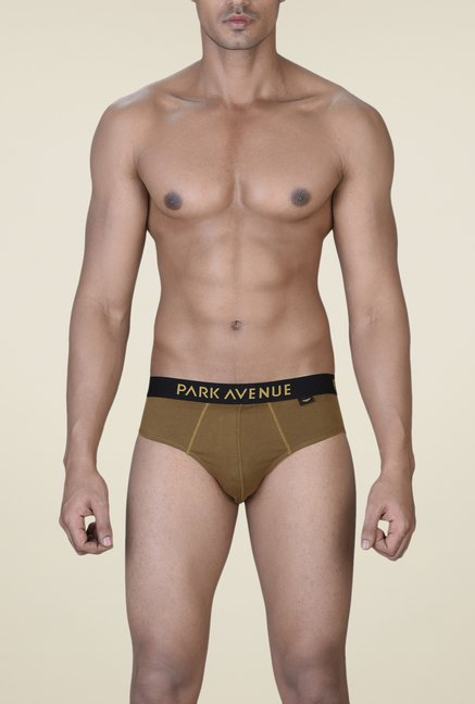 Park Avenue Khaki & Black Briefs