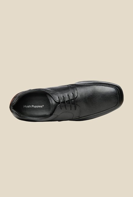 Hush Puppies Jungle II Black Derby Shoes