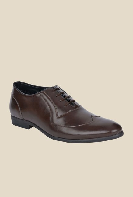 DaMochi Gusto Brown Oxford Shoes