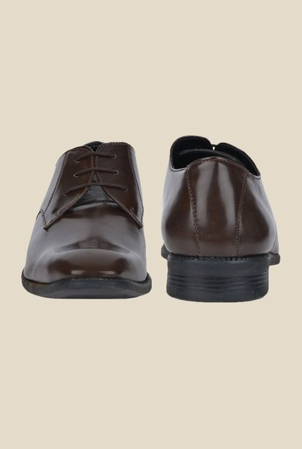DaMochi Bogota Brown Derby Shoes