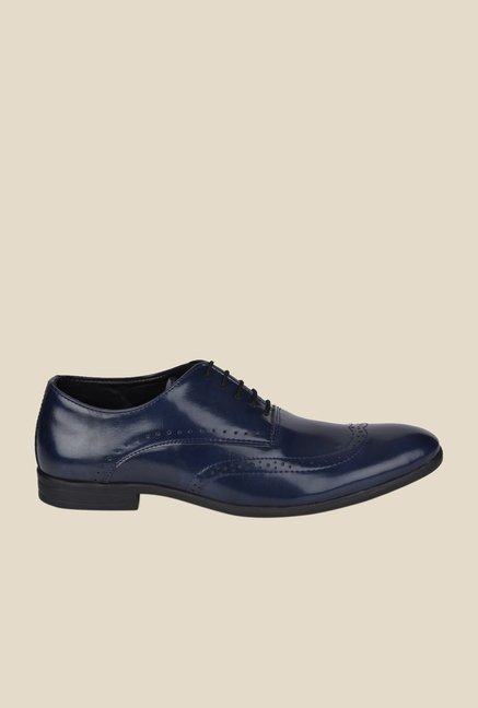 DaMochi Darwin Navy Brogue Shoes