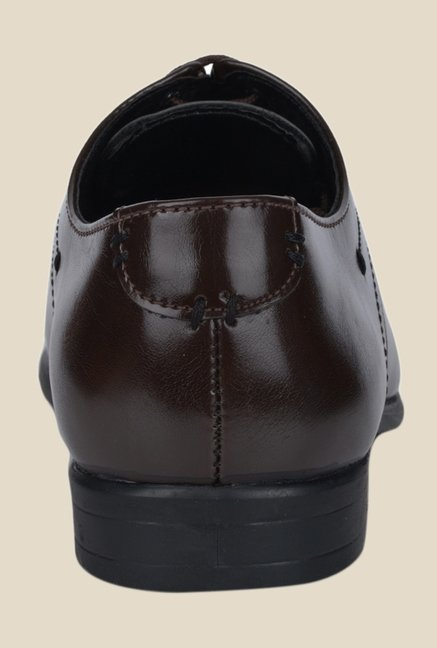 DaMochi Quebec Brown Derby Shoes
