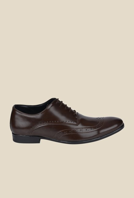 DaMochi Darwin Brown Brogue Shoes