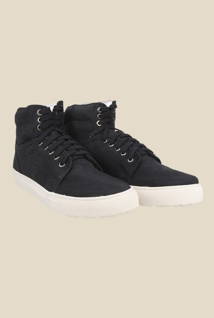 Knotty Derby Alecto Collar Black Sneakers