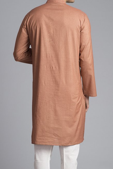 Fabindia Rust Striped Kurta