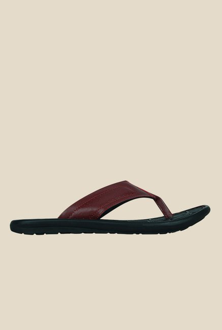 Kielz Maroon Thong Sandals