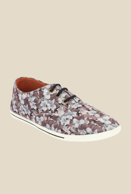 Shoetopia Brown & Grey Casual Shoes