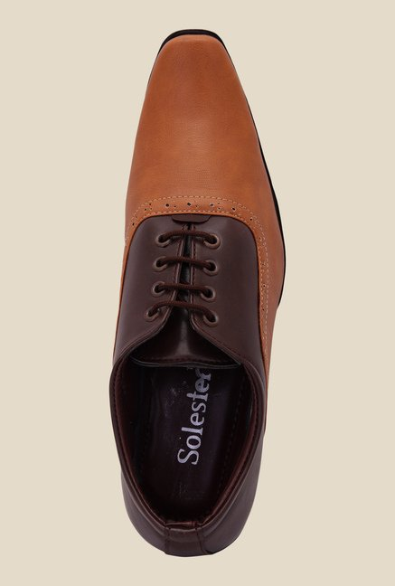 Solester Brown & Tan Oxford Shoes