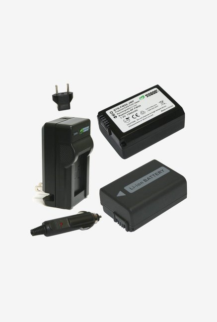 Wasabi Power Battery 2-Pack and Charger for Sony (Black)