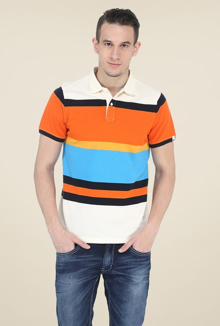 Basics Multicolor Polo T Shirt