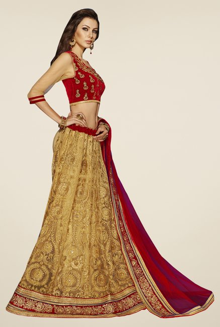 Occeanus Red & Gold Embroidered Net Lehenga Set