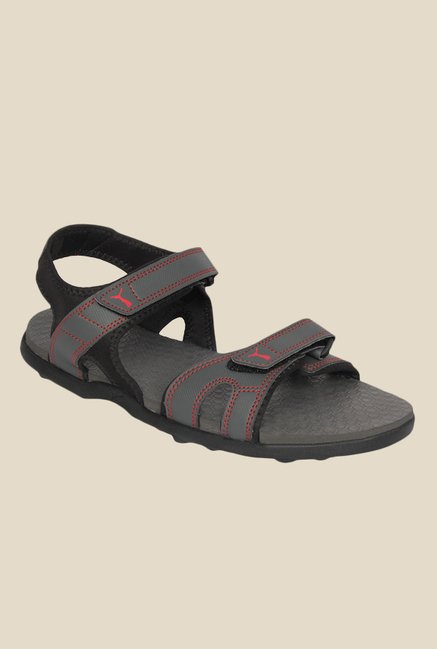 704aceeaea6a Buy Puma Starry DP Grey   Red Floater Sandals for Men at Best Price   Tata  CLiQ