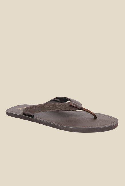 6f53e8af1d Buy Puma Ketava III DP Brown Flip Flops for Men at Best Price @ Tata ...