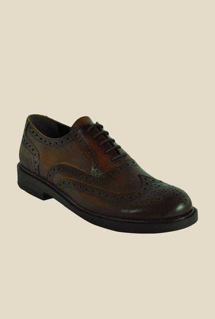 Salt 'n' Pepper Antartic Brown Brogue Shoes
