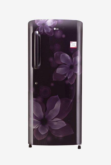 LG GL-B241APOX 235 Ltr 4 Star Refrigerator (Purple Orchid)