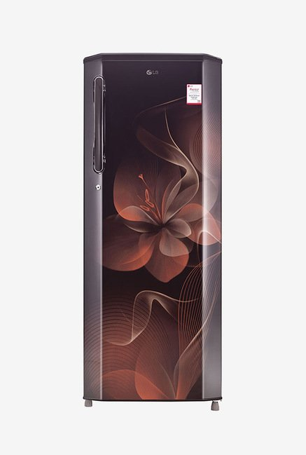 LG GL-B281BHDX 270 Ltr 4 Star Refrigerator (Hazel Dazzle)