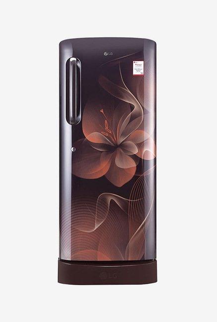 LG GL-D241AHDX 235 Ltr 4 Star Refrigerator (Hazel Dazzle)