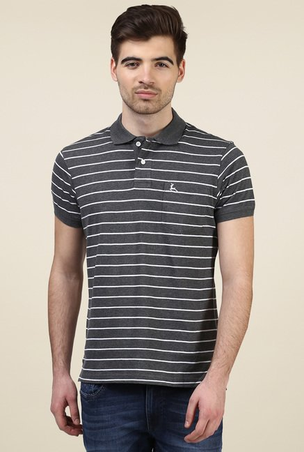 Parx Dark Grey Cotton Regular Fit Polo T-Shirt
