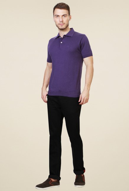 Allen Solly Purple Cotton Polo T-Shirt