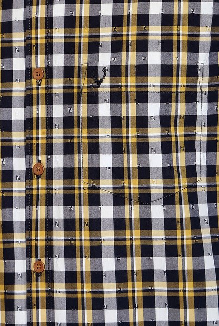Allen Solly Multicolor Comfort Fit Checks Shirt