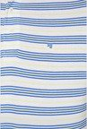 Peter England Blue & White Striped Polo T-Shirt