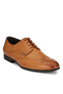 San Frissco Tan Brogue Shoes - Mp000000001763427