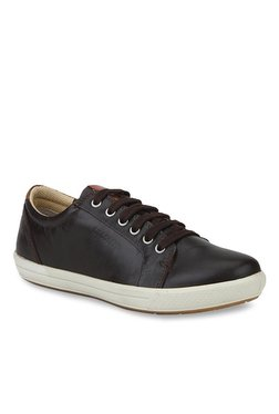 Woodland Dark Brown & White Sneakers