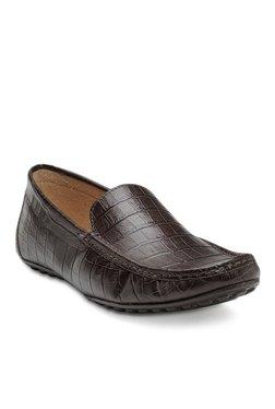 aae86eef1a28 Franco Leone Dark Brown Loafers