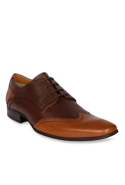 Ruosh Dark Brown & Tan Derby Shoes - Mp000000001888101