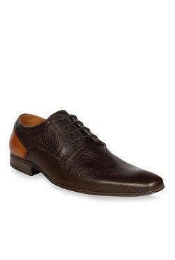 Ruosh Dark Brown & Tan Derby Shoes