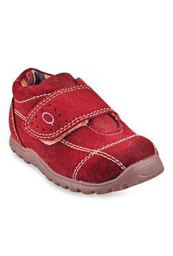 Beanz Alexander Maroon Velcro Shoes