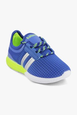 d3bc9c3da48 Kittens Blue Leather Sneakers