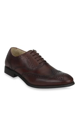 Red Tape Dark Brown Brogue Shoes 80ab06bbb