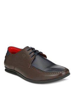 Alberto Torresi Geremia Dark Brown & Navy Derby Shoes