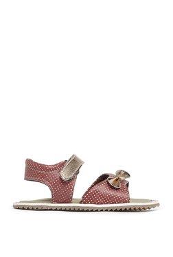 Zudio Maroon Polka Dotted Sandals