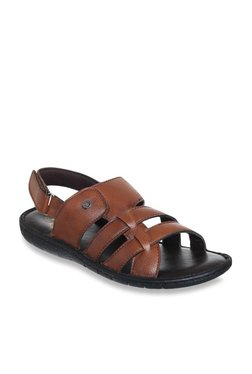 Duke Dark Tan Back Strap Sandals