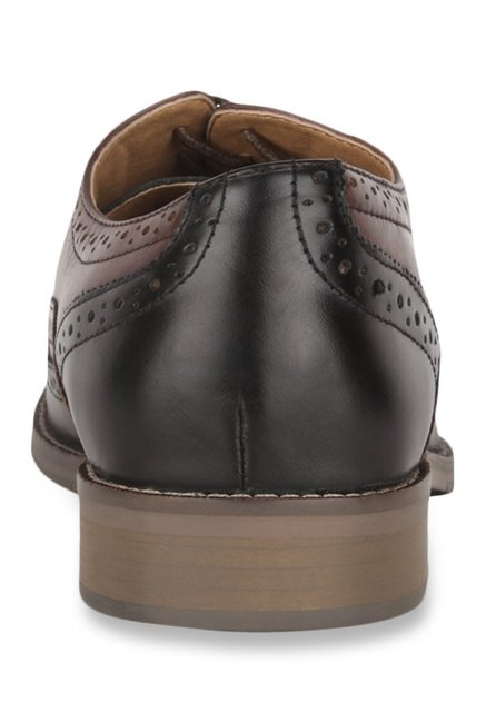 Steve Madden Brymm Brown & Black Brogue Shoes