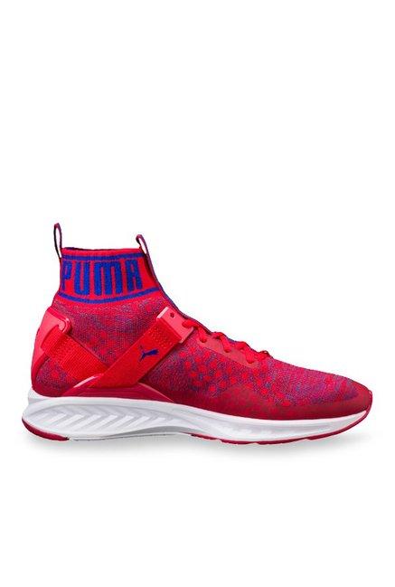 Shoes Running For Toreador Ignite Puma Evoknit Blue Men amp; Buy Lapis qS80W