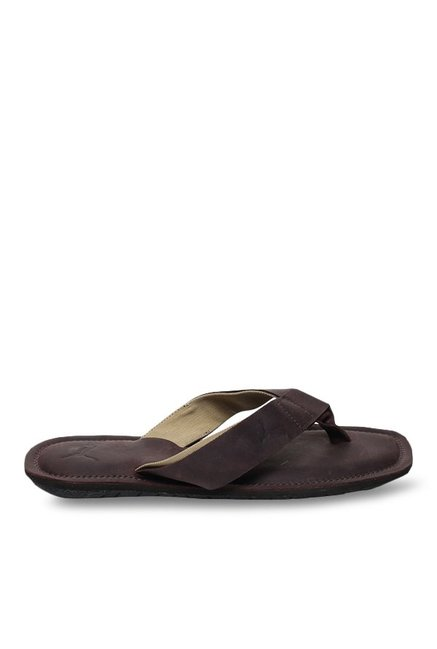 ad5301dfe028 Buy Puma Paramount IDP Chocolate Brown Thong Sandals for Men at Best Price    Tata CLiQ