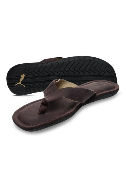 62a78b0251cd Buy Puma Paramount IDP Chocolate Brown Thong Sandals for Men at Best ...
